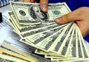Tin tức - Vụ mua bán 100 USD ở Nghệ An: Hai tiệm vàng bị xử phạt 170 triệu đồng