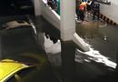 """Tin tức - Máy bơm chạy hết công suất cứu loạt xế hộp tiền tỷ """"đuối nước"""" ở chung cư Hoàng Anh Gia Lai"""