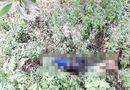 Tin tức - Tình tiết rùng mình vụ tra tấn con nợ đến chết, vứt xác ra quốc lộ ở Quảng Ninh