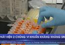 Y tế - Phát hiện 2 chủng vi khuẩn kháng kháng sinh mới