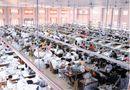 Cần biết - Tọa đàm: Nâng cao năng suất chất lượng hàng hóa chủ lực địa phương