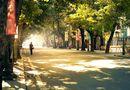Tin tức - Dự báo thời tiết ngày 6/2 (mồng 2 Tết): 3 miền nắng đẹp thuận lợi du xuân