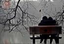 Tin tức - Dự báo thời tiết ngày 14/2: Sương mù, mưa phùn trong ngày lễ tình nhân