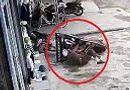 Tin tức - Video: Người đàn ông say xỉn lái xe máy xuyên thủng biển quảng cáo