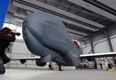 """Tin thế giới - NATO, Canada đấu thầu mua nguyên mẫu """"ác điểu"""" Euro Hawk của Đức"""
