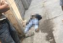 """An ninh - Hình sự - Ghen tuông, thiếu niên 17 tuổi nhắn tin dụ """"tình địch"""" tới rồi sát hại"""