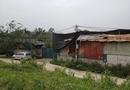 """Xã hội - Thanh Oai: Cụm nhà xưởng trái phép từng có người tử vong """"ngang nhiên"""" tồn tại"""