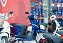 Kinh doanh - Giá xe máy điện VinFast tháng 3/2019: Mẫu Klara tăng giá mạnh