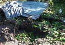 Tin trong nước - Điều tra vụ nổ tại chòi canh vuông tôm, một cháu bé bị thương