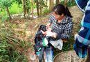 Tin trong nước - Đi làm đồng, người dân bàng hoàng phát hiện bé sơ sinh còn nguyên dây rốn