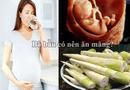 Sức khoẻ - Làm đẹp - Bà bầu có ăn măng được không?