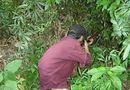 Tin trong nước - Đi săn, bắn nhầm người làng vì tưởng là thú rừng