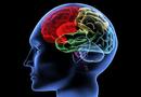 Đời sống - Rút ngắn thời gian hồi phục chức năng cho người di chứng não