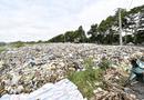 Tin trong nước - Vụ hơn 300 xác thai nhi bị bỏ theo rác thải: Chủ tịch Cà Mau chỉ đạo kiểm tra, xác minh
