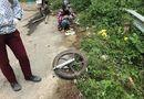 Video-Hot - Đổ đèo Tam Đảo xe mất phanh, thiếu nữ đi phượt rơi xuống vực sâu