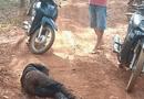 An ninh - Hình sự - Ráo riết truy bắt nghi can chặn đường, đâm gục vợ cũ trong lô cao su