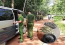 Tin trong nước - Vụ 2 thi thể giấu trong bê tông ở Bình Dương: 30 phút lần tìm manh mối trong rừng cao su bạt ngàn