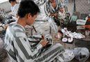Tin trong nước - ĐBQH nói về tổ chức cho phạm nhân lao động ngoài trại giam