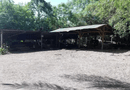Tin trong nước - Đà Nẵng: Thợ nhôm kính chết trong tư thế treo cổ ở xưởng gỗ