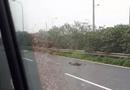 Tin trong nước - Ô tô 16 chỗ tông tử vong người đàn ông nhặt rác trên đại lộ Thăng Long