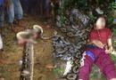 Tin thế giới - Trăn khổng lồ tấn công, siết chết người phụ nữ ở Indonesia