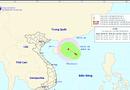 Tin trong nước - Vùng áp thấp trên Biển Đông có thể mạnh lên thành áp thấp nhiệt đới