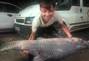 """Tin trong nước - Bắt được cá trắm đen """"khủng"""" dài 1,5 mét, nặng 50 kg ở Yên Bái"""