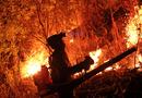 """Tin trong nước - Rừng ở Hà Tĩnh lại cháy đỏ rực, hàng trăm người xuyên đêm vật lộn với """"giặc lửa"""""""