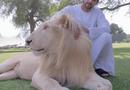 Video-Hot - Video: Choáng ngợp với thú chơi xa xỉ của Hoàng tử Dubai
