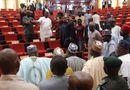 Tin thế giới - Nghị sĩ Nigeria náo loạn tại phiên họp vì rắn bất ngờ xuất hiện