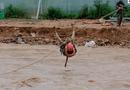 Việc tốt quanh ta - Lâm Đồng: Cảnh sát đu dây, giải cứu 41 người dân bị lũ cô lập
