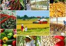 Xã hội - Tăng cường năng lực lao động nông thôn phục vụ khởi nghiệp nông nghiệp công nghệ cao, tham gia chuỗi giá trị nông sản toàn cầu (Phần II)