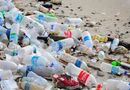 Xã hội - Rác thải nhựa và những giải pháp xử lý hiệu quả?