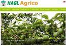 Kinh doanh - HAGL Agrico vẫn là công ty con của Tập đoàn HAGL