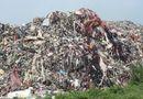 Tin tức - Bài 2 - Bãi rác khổng lồ ở Dị Sử (Hưng Yên): Sau chỉ đạo vẫn y nguyên
