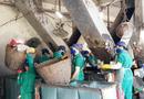 """Tin trong nước - Bộ Công an đề nghị Cà Mau báo cáo kết quả kiểm tra nhà máy rác của """"thiếu gia"""" Tô Công Lý"""