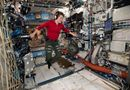 Tin thế giới - Tội phạm không gian đầu tiên trên thế giới có thể xuất hiện trên Trạm Vũ trụ Quốc tế?