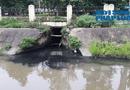 """Kinh doanh - Thanh Hóa: Khu công nghiệp Lễ Môn """"tuồn"""" nước thải ra môi trường?"""