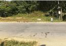 Tin trong nước - Quảng Nam: Hai xe máy va chạm kinh hoàng, 2 người tử vong