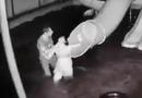 Tin trong nước - Yêu cầu xử lý nghiêm vụ chồng đánh đập vợ từ dưới nước lên tận bờ ở Tây Ninh