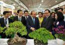 Xã hội - Hà Nội tiếp tục xây dựng vùng nông thôn xanh, sạch, đẹp, một miền quê đáng sống