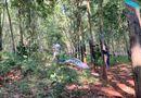 Tin trong nước - Bà Rịa - Vũng Tàu: Nghi vấn thiếu nữ 16 tuổi bị sát hại trong rừng cao su