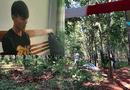 Pháp luật - Vụ thiếu nữ 16 tuổi bị sát hại trong rừng cao su: Lời kể xót xa của người cha
