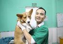 Xã hội - Săn tìm bác sỹ thú y hà Nội giỏi cho thú cưng có thực sự khó?