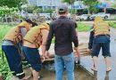 Tin trong nước - Đà Nẵng: Tìm thấy thi thể nam thanh niên nhảy cầu tự vẫn, nghi do buồn chuyện bệnh tật