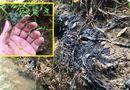 Tin trong nước - Vụ nước sạch Sông Đà bị nhiễm dầu: Công an Hoà Bình, Hà Nội vào cuộc điều tra