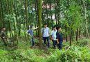 Tin trong nước - Đi làm rừng, phát hiện thi thể Phó chủ tịch xã xung quanh có một số viên thuốc lạ