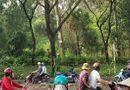 Tin trong nước - TP. HCM: Đi hái rau dại, tá hỏa phát hiện người đàn ông tử vong trong tư thế treo cổ giữa rừng ươm