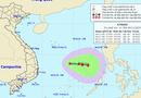 Tin trong nước - Xuất hiện áp thấp nhiệt đới trên biển Đông, diễn biến phức tạp