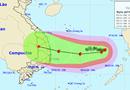 4 cơn bão cùng hình thành trên các đại dương khiến bão số 6 diễn biến khó lường